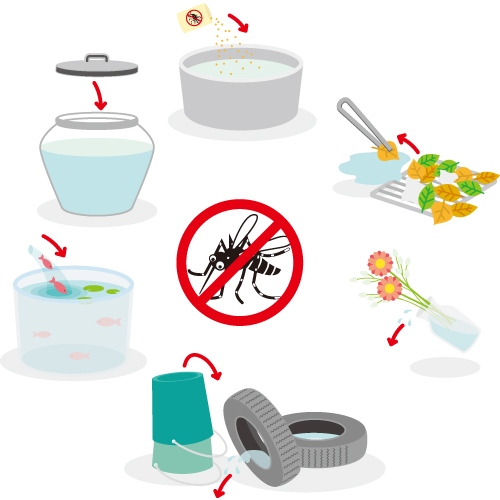 蚊の繁殖を抑えよう