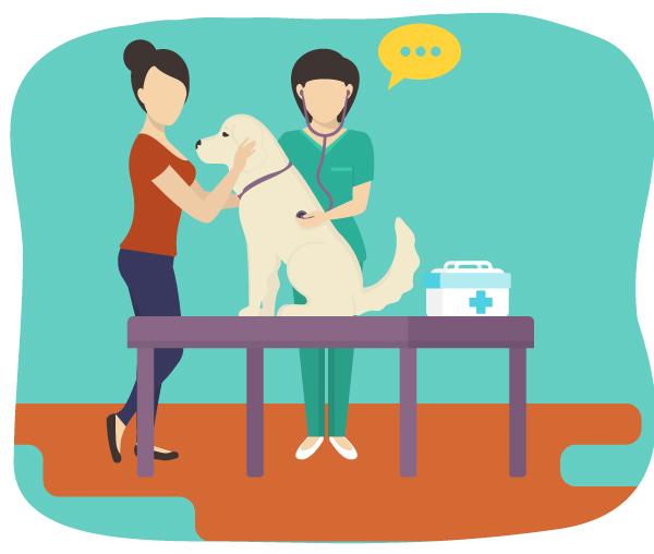 ペットの健康診断