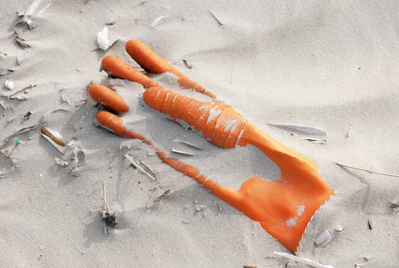 砂浜にごみ