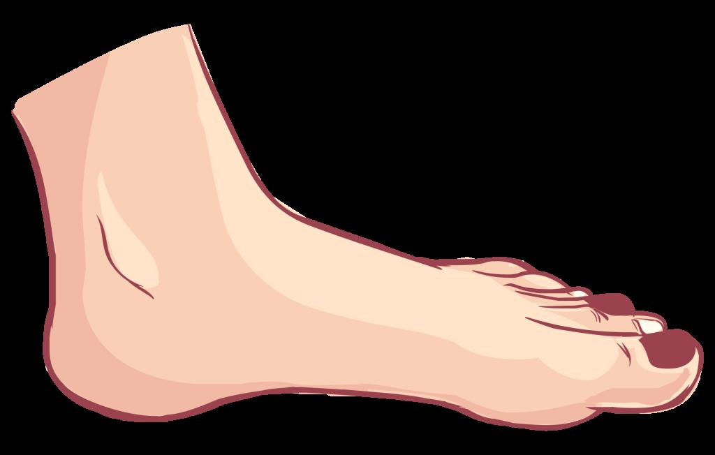 正常な足裏