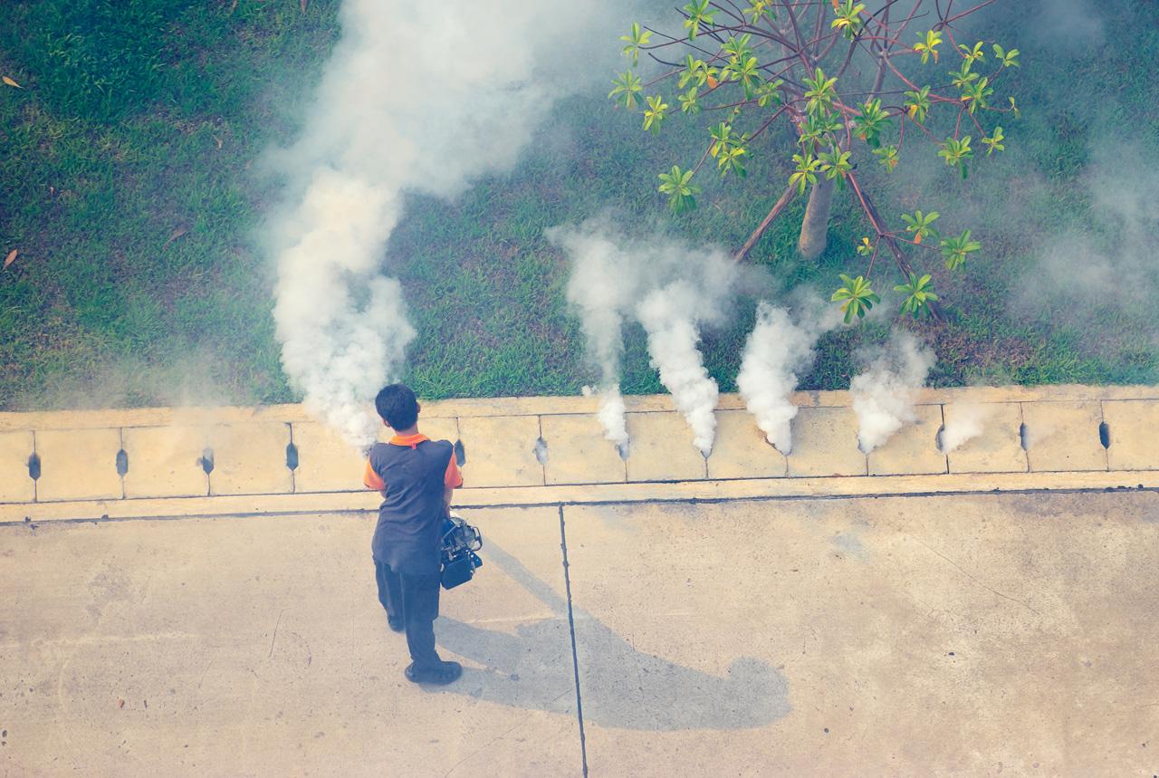 蚊が媒介の感染症 12県が対策の第一段階も完了せず