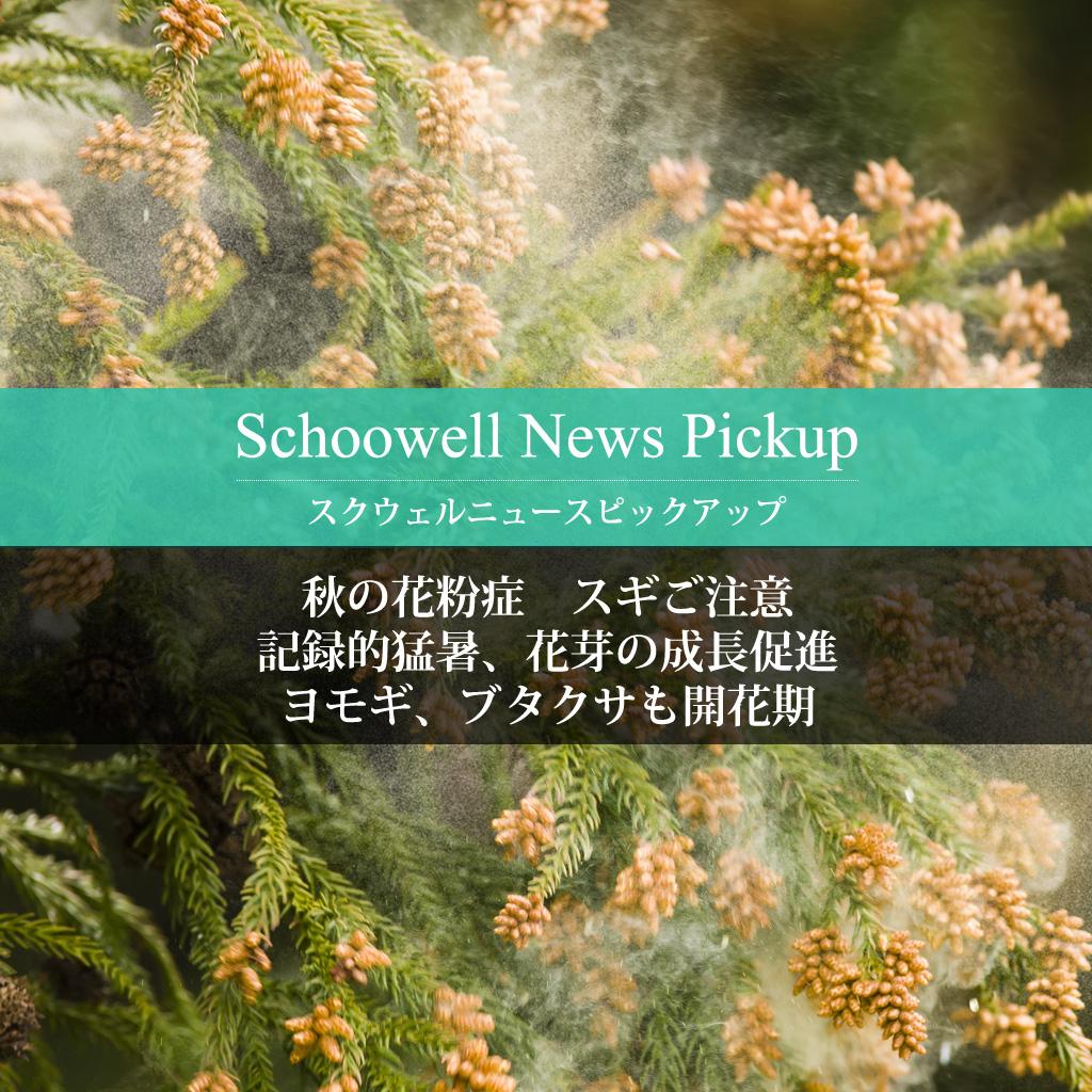 秋の花粉症 スギご注意 記録的猛暑、花芽の成長促進 ヨモギ、ブタクサも開花期