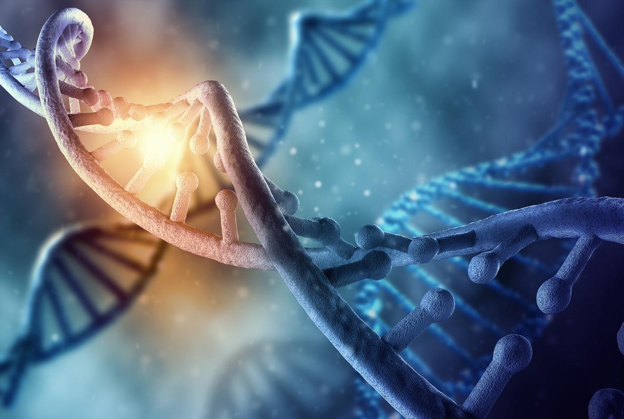 喫煙で遺伝子に多数の変異発生 肺や喉、がん危険性高める