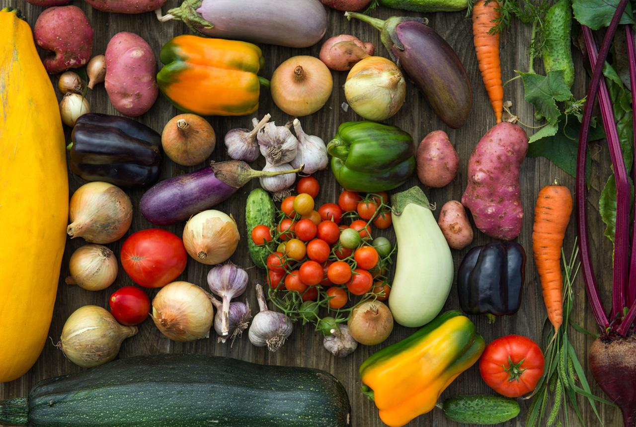 <神奈川県>市場のプロが野菜指導 児童の食への理解深める
