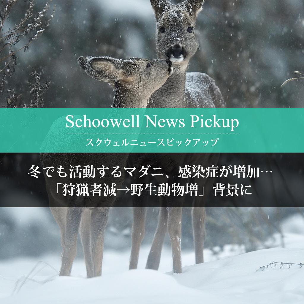 冬でも活動するマダニ、感染症が増加…「狩猟者減→野生動物増」背景に