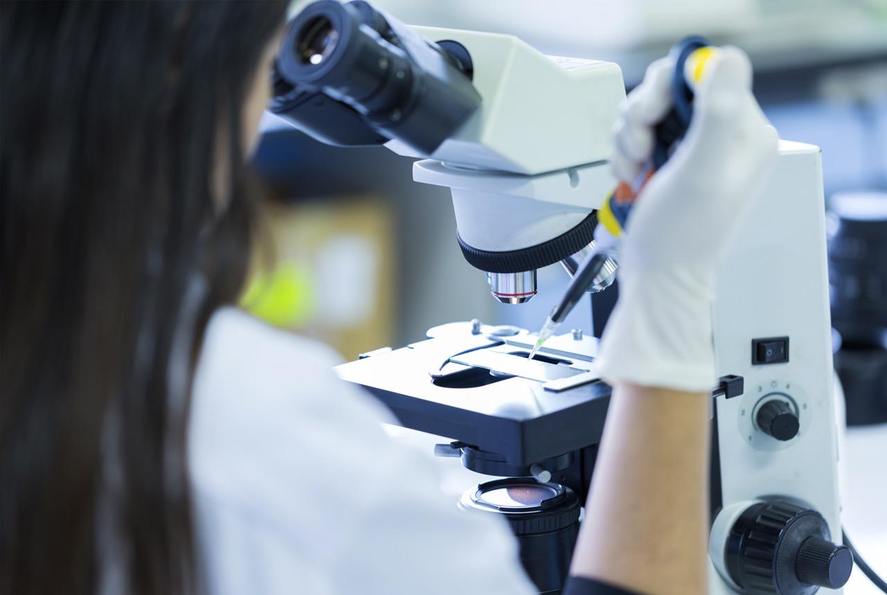 <岡山県>アレルギー性疾患の関与物質特定 岡山大グループ、新薬開発に光