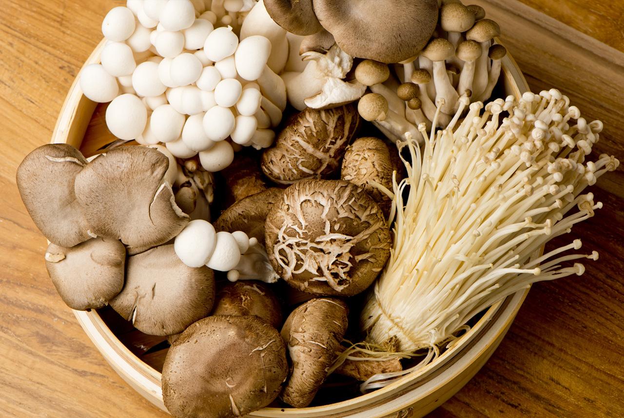 <奈良県>奈良県産キノコで健康的に 「菌食」改めて注目