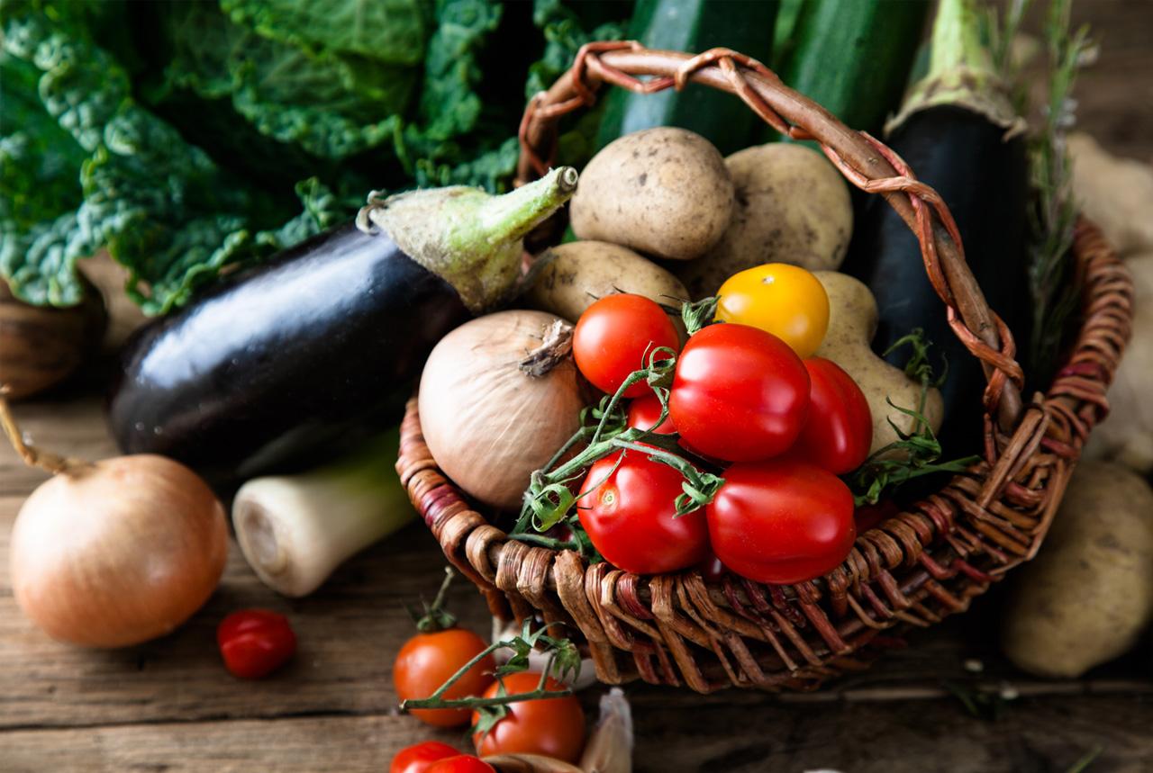 保育園施設への献立提供・栄養相談をスタート