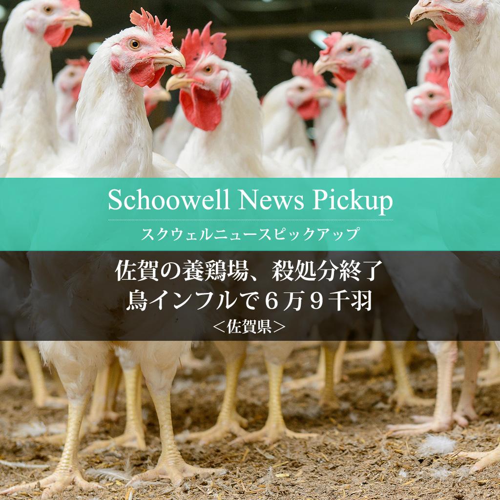 佐賀の養鶏場、殺処分終了 鳥インフルで6万9千羽