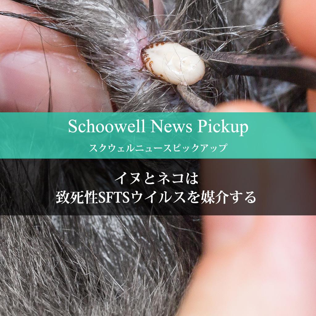 イヌとネコは致死性SFTSウイルスを媒介する
