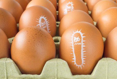 暑い時期に増えるサルモネラ食中毒 日ごろの心掛けで予防可能