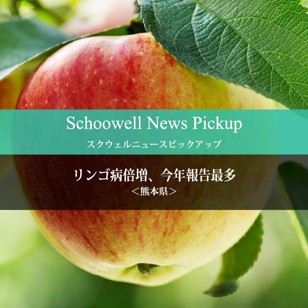 <熊本県>リンゴ病倍増、今年報告最多