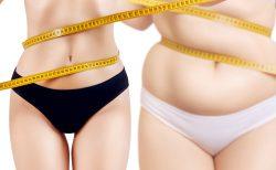 肥満度比較